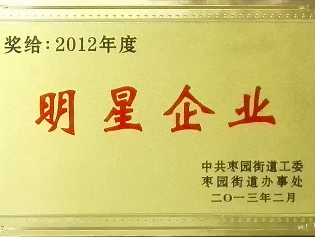 2012年度明星企业