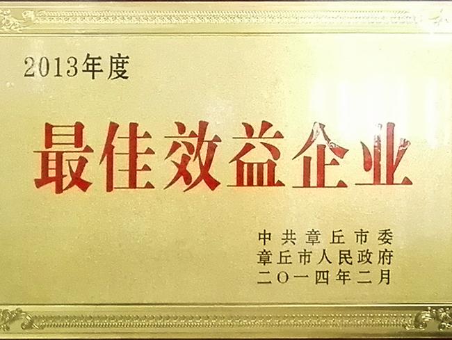 2013年度最佳效益企业